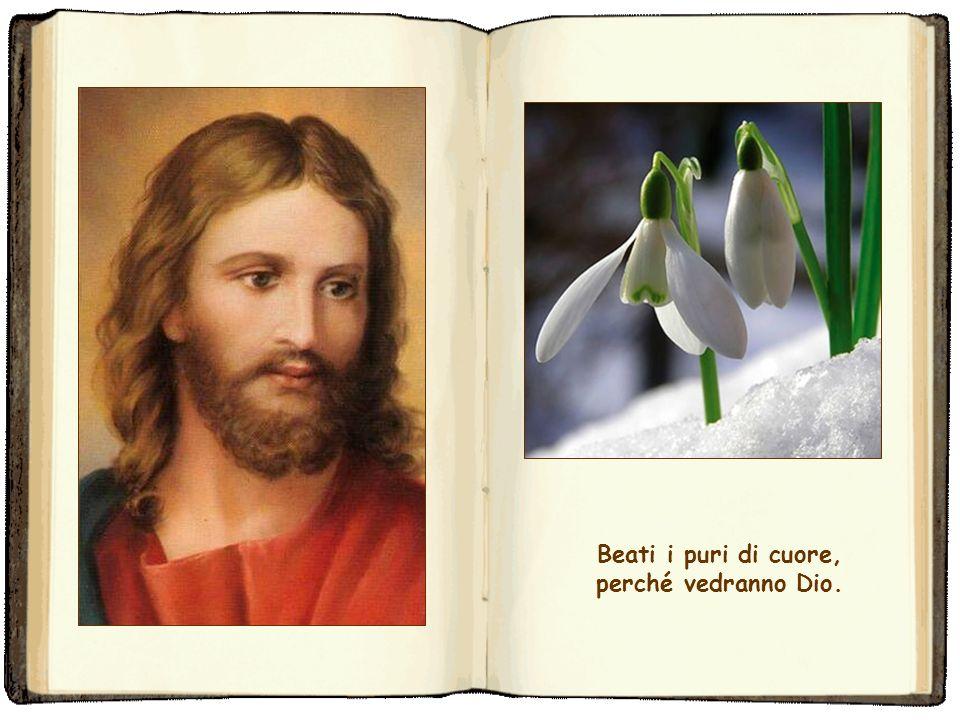 Beati i puri di cuore, perché vedranno Dio.