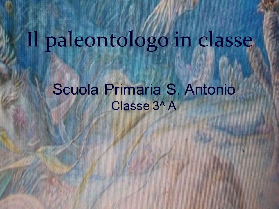 Il paleontologo in classe