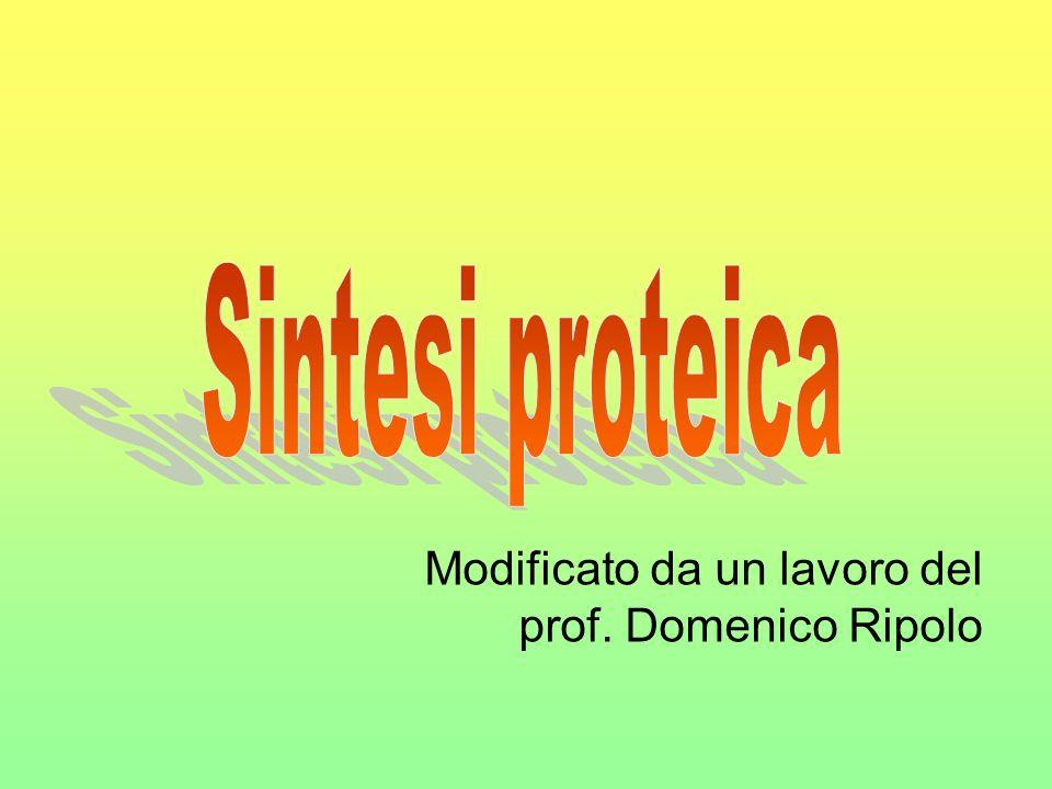 Modificato da un lavoro del prof. Domenico Ripolo
