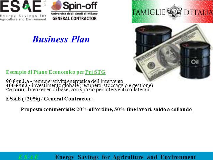 Business Plan Esempio di Piano Economico per Prj STG