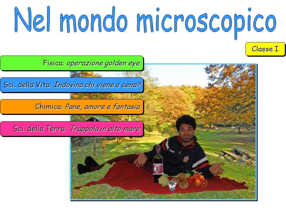 Nel mondo microscopico