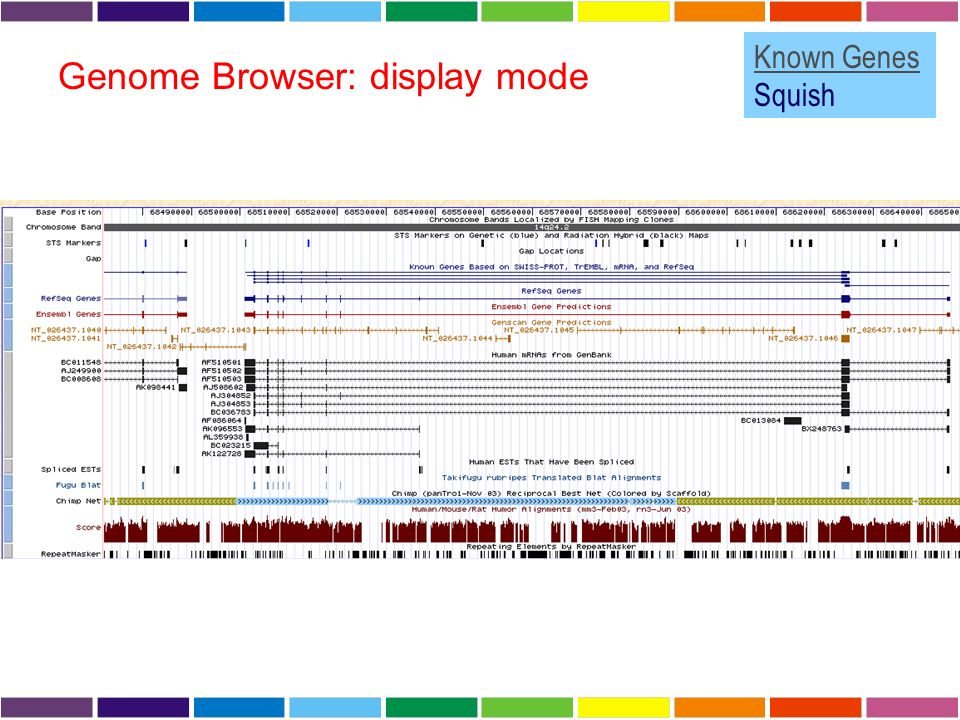 Genome Browser: display mode