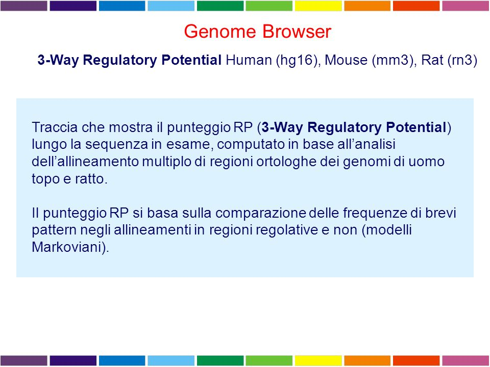 3-Way Regulatory Potential Human (hg16), Mouse (mm3), Rat (rn3)