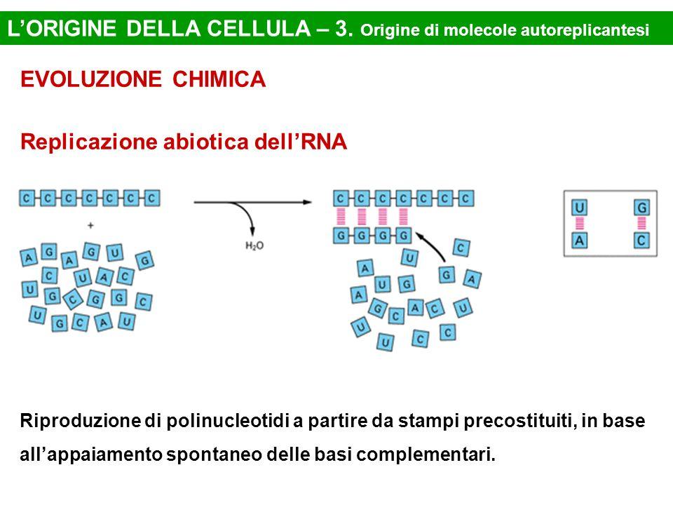 L'ORIGINE DELLA CELLULA – 3. Origine di molecole autoreplicantesi