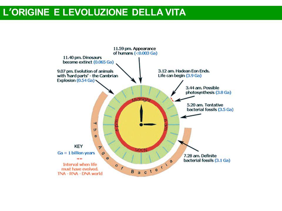L'ORIGINE E LEVOLUZIONE DELLA VITA