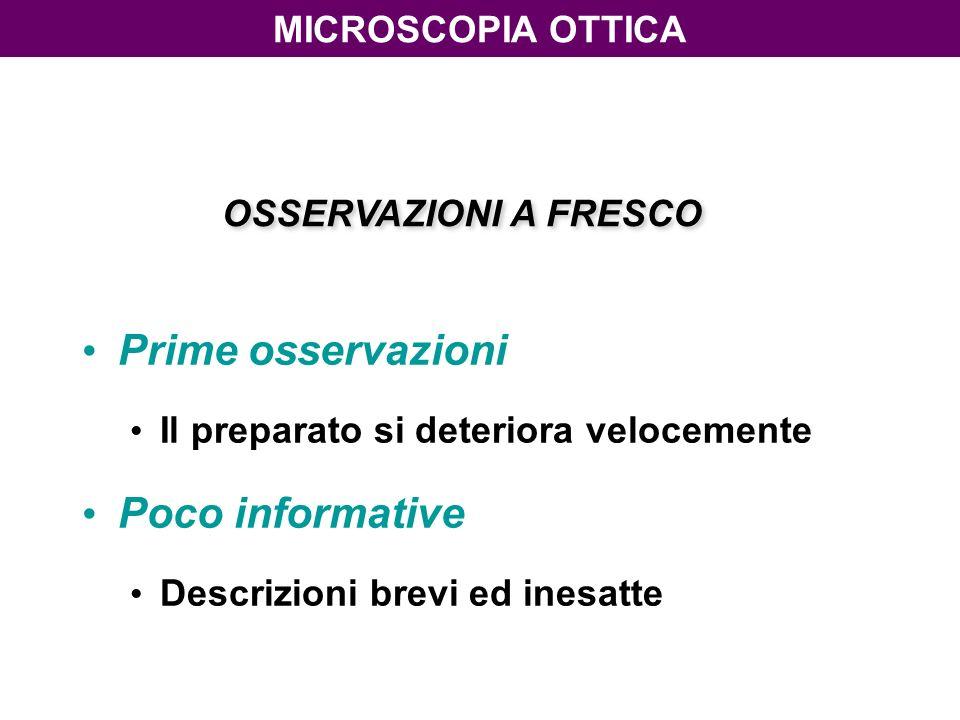 Prime osservazioni Poco informative microscopiA ottica