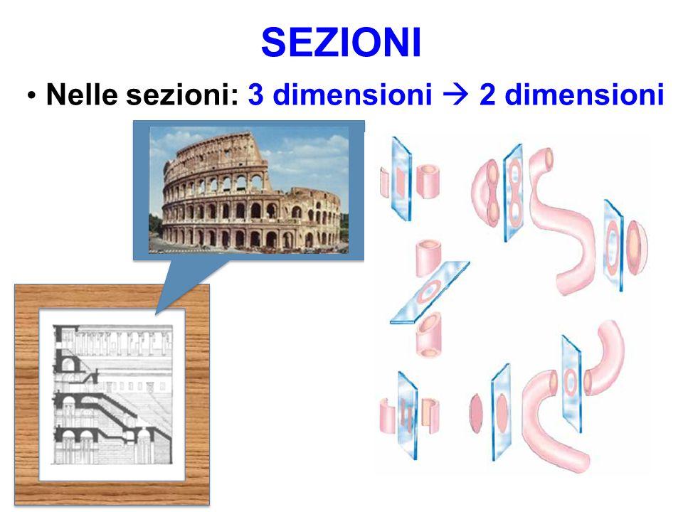 SEZIONI Nelle sezioni: 3 dimensioni  2 dimensioni
