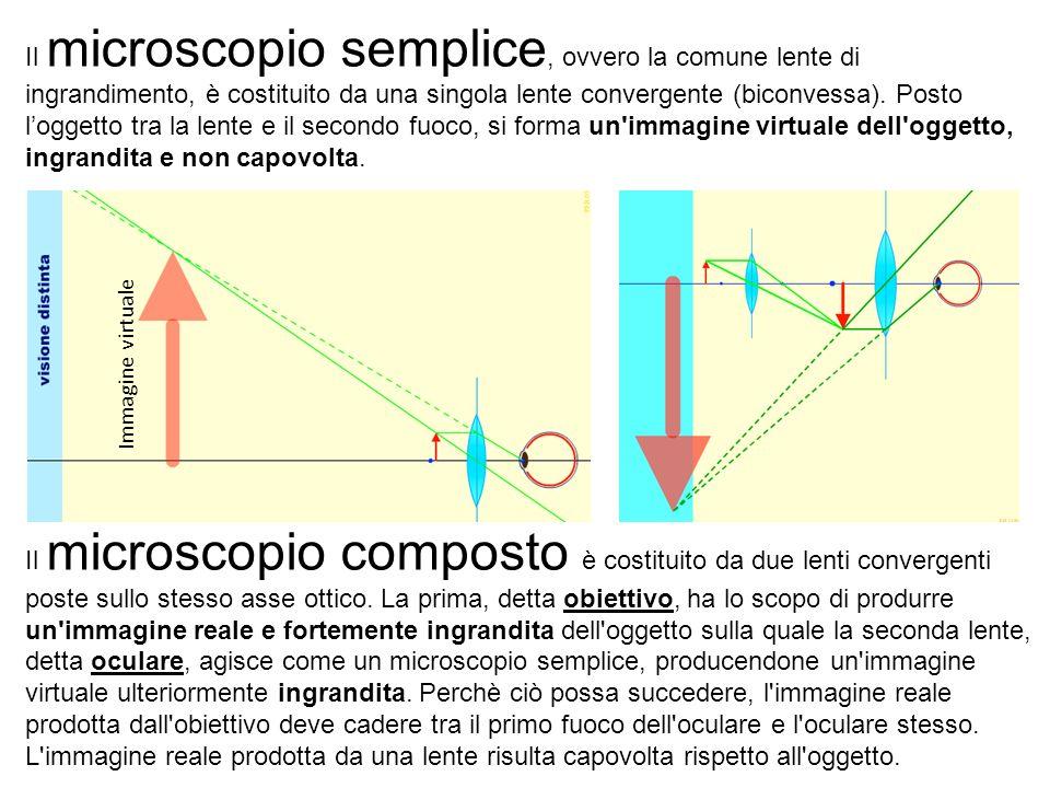 Il microscopio semplice, ovvero la comune lente di ingrandimento, è costituito da una singola lente convergente (biconvessa). Posto l'oggetto tra la lente e il secondo fuoco, si forma un immagine virtuale dell oggetto, ingrandita e non capovolta.