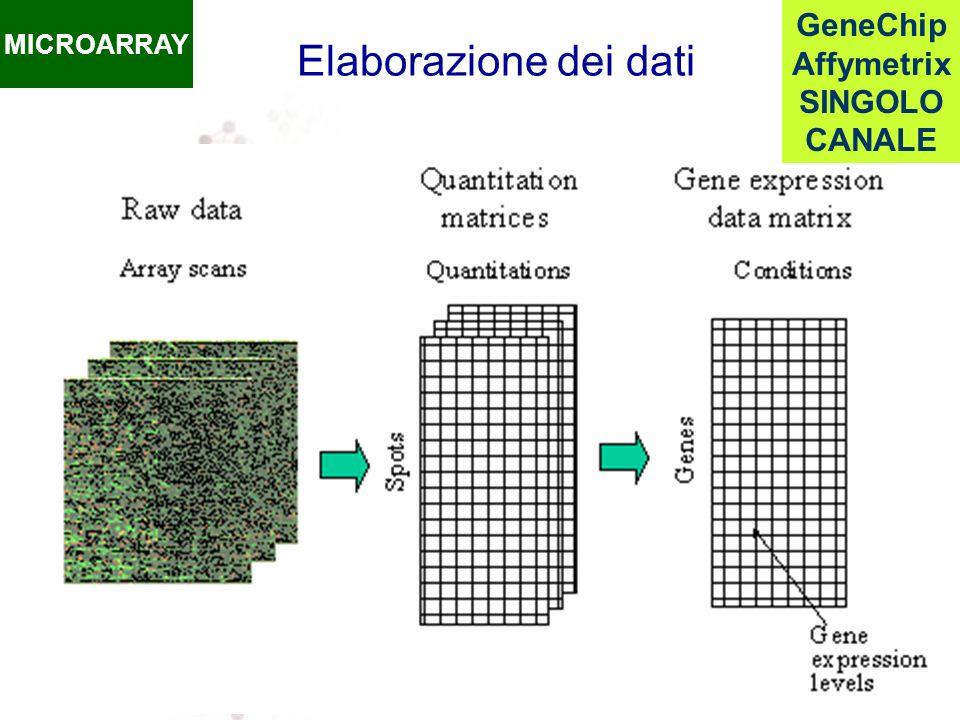 MICROARRAY GeneChip Affymetrix SINGOLO CANALE Elaborazione dei dati