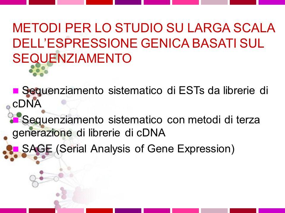 METODI PER LO STUDIO SU LARGA SCALA DELL'ESPRESSIONE GENICA BASATI SUL SEQUENZIAMENTO