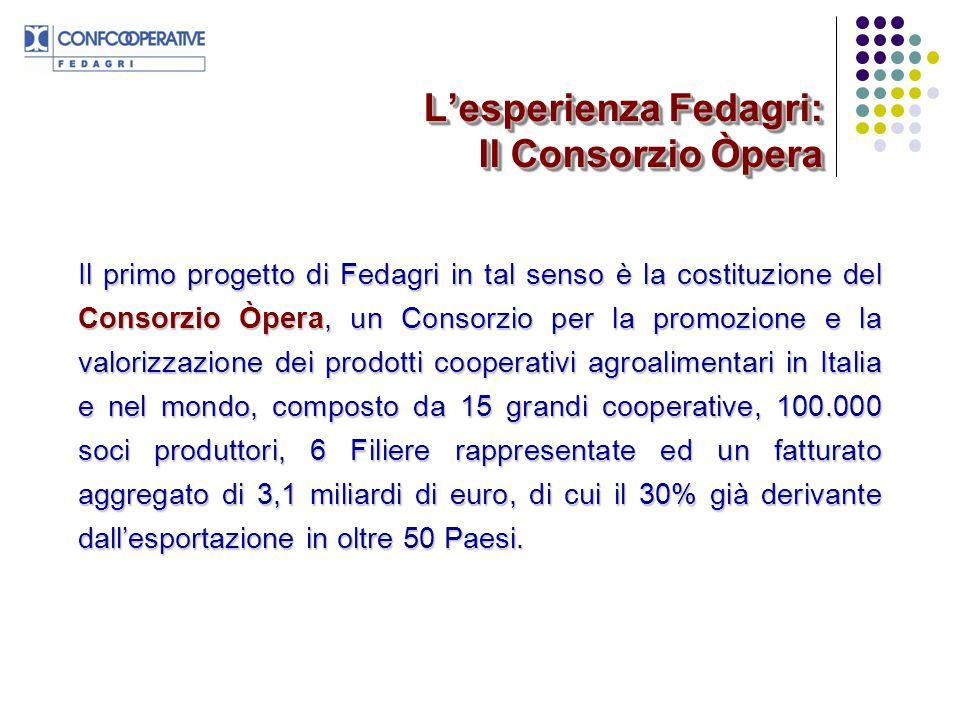 L'esperienza Fedagri: Il Consorzio Òpera