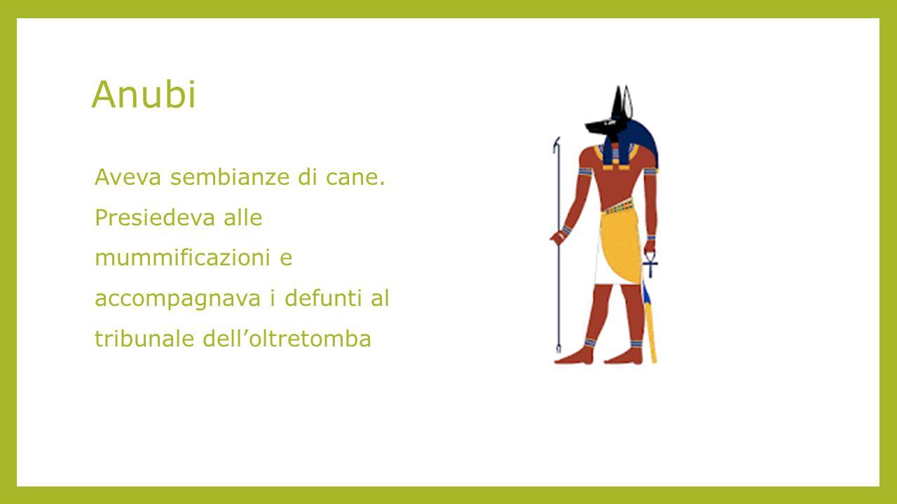 Anubi Aveva sembianze di cane.