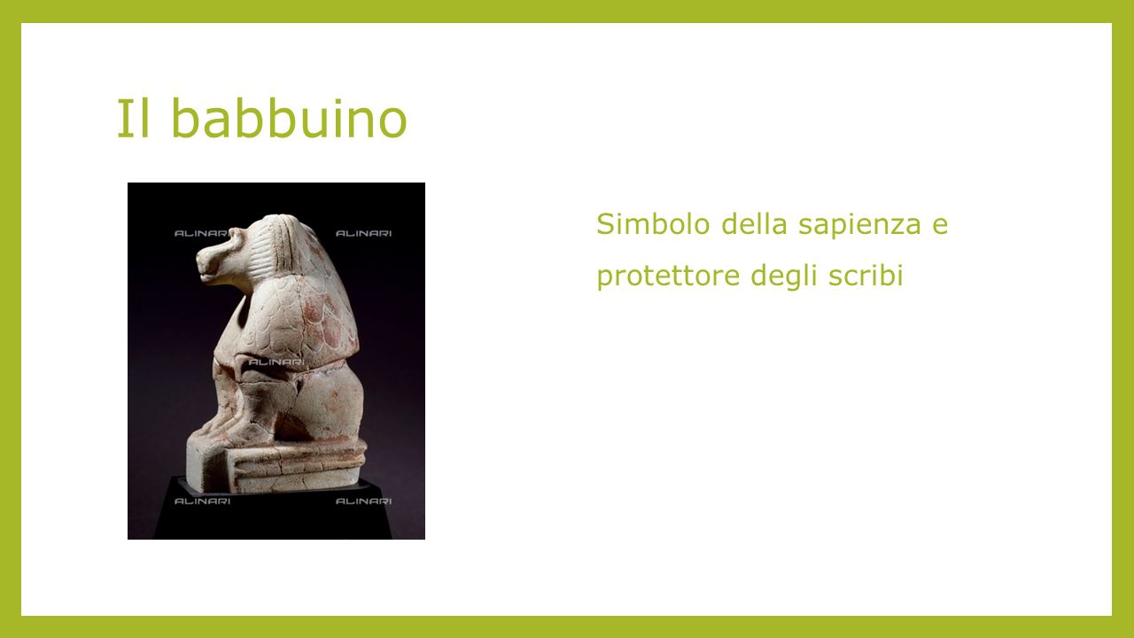 Il babbuino Simbolo della sapienza e protettore degli scribi