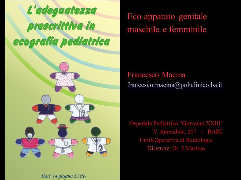 Eco apparato genitale maschile e femminile