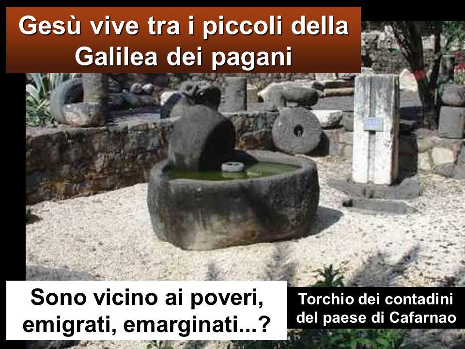 Gesù vive tra i piccoli della Galilea dei pagani