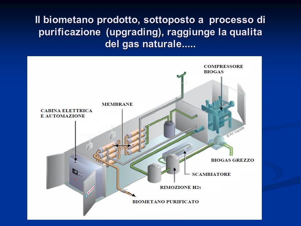 Il biometano prodotto, sottoposto a processo di purificazione (upgrading), raggiunge la qualita del gas naturale.....