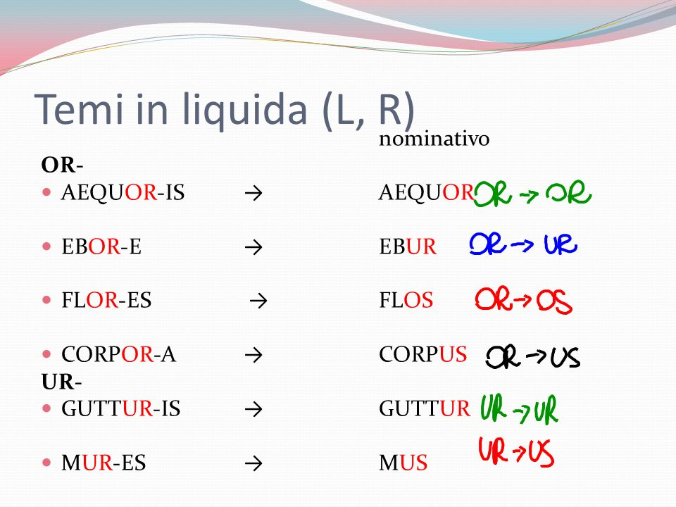 Temi in liquida (L, R) nominativo OR- AEQUOR-IS → AEQUOR EBOR-E → EBUR