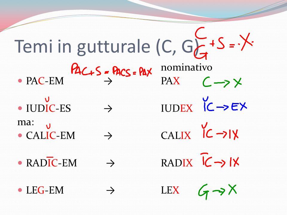 Temi in gutturale (C, G) nominativo PAC-EM → PAX IUDIC-ES → IUDEX ma: