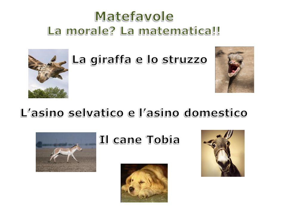 La morale La matematica!! L'asino selvatico e l'asino domestico