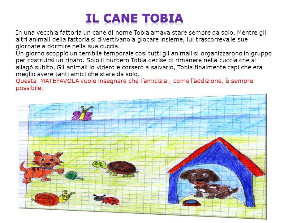 Il cane Tobia