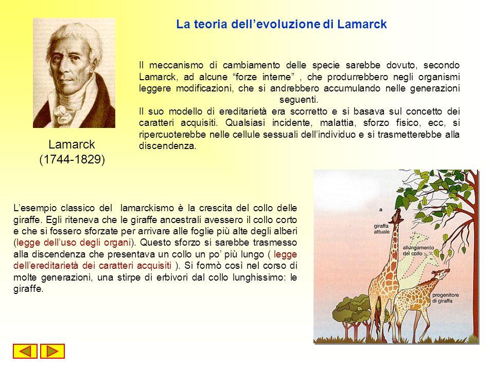 La teoria dell'evoluzione di Lamarck