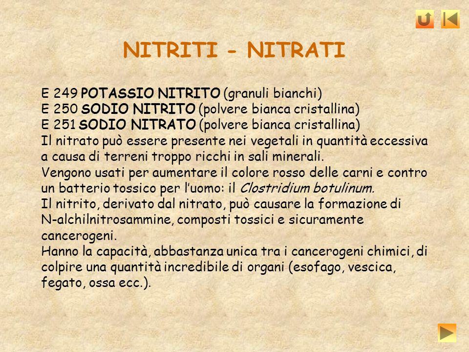 NITRITI - NITRATI E 249 POTASSIO NITRITO (granuli bianchi)