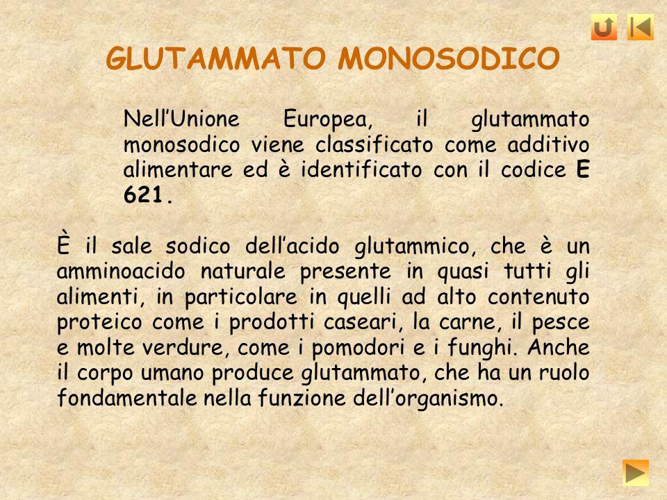 GLUTAMMATO MONOSODICO