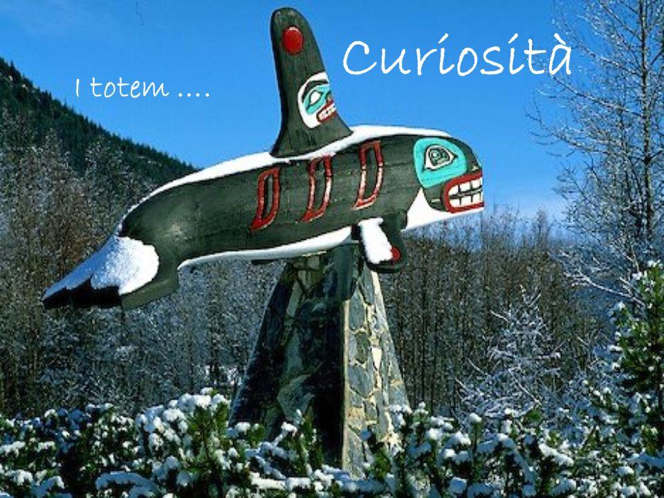Curiosità I totem ….
