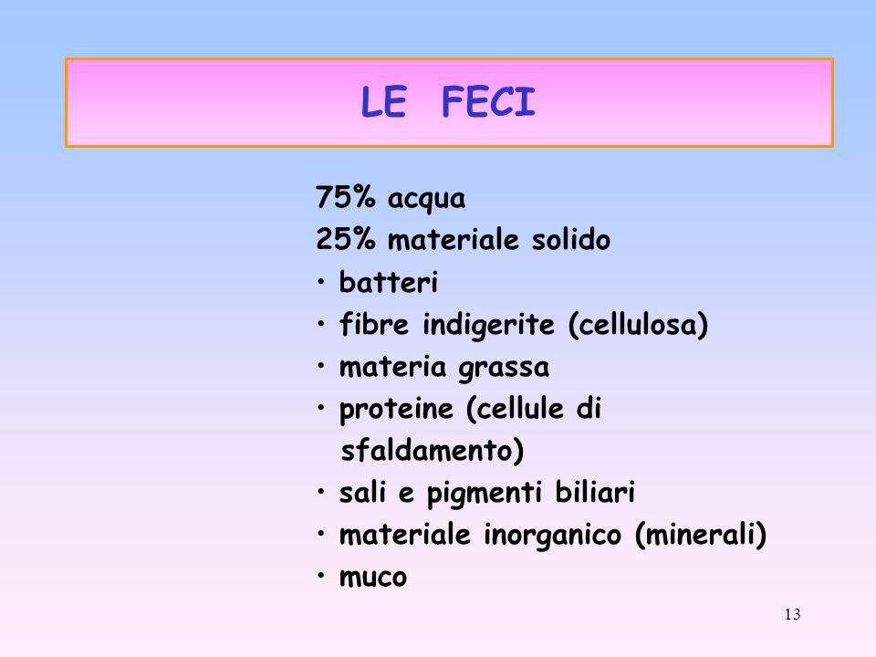 LE FECI 75% acqua 25% materiale solido batteri