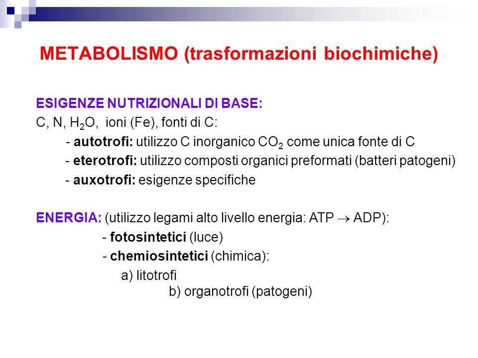 METABOLISMO (trasformazioni biochimiche)