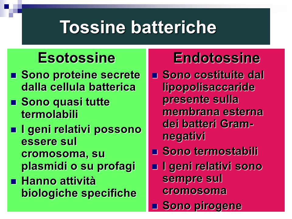 Tossine batteriche Esotossine Endotossine