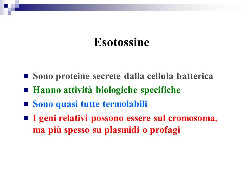 Esotossine Sono proteine secrete dalla cellula batterica