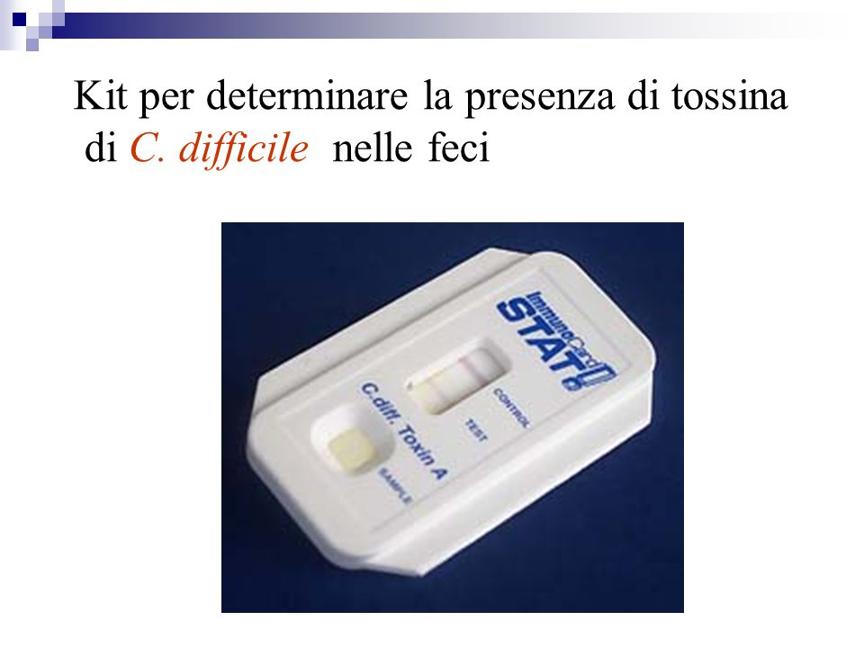 Kit per determinare la presenza di tossina di C. difficile nelle feci