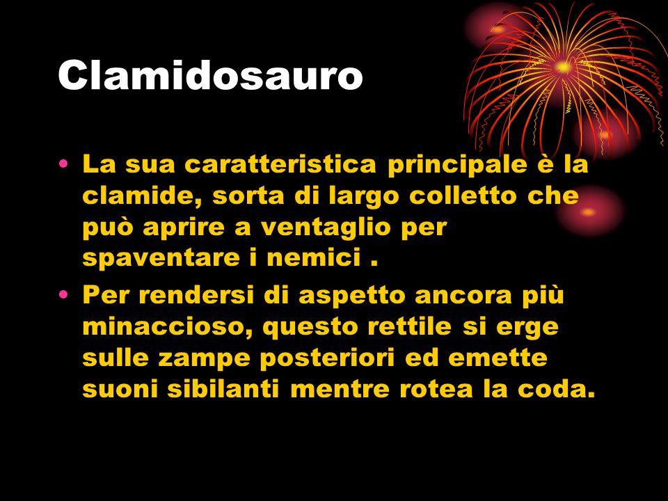 Clamidosauro La sua caratteristica principale è la clamide, sorta di largo colletto che può aprire a ventaglio per spaventare i nemici .
