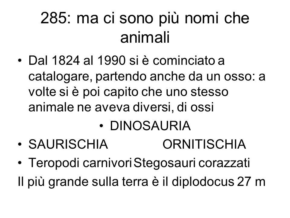 285: ma ci sono più nomi che animali