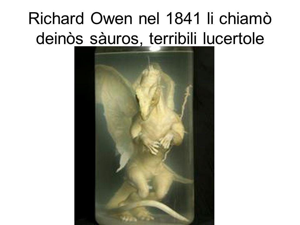 Richard Owen nel 1841 li chiamò deinòs sàuros, terribili lucertole