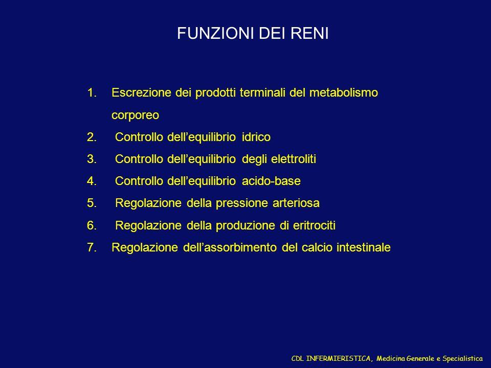 FUNZIONI DEI RENI Escrezione dei prodotti terminali del metabolismo corporeo. Controllo dell'equilibrio idrico.
