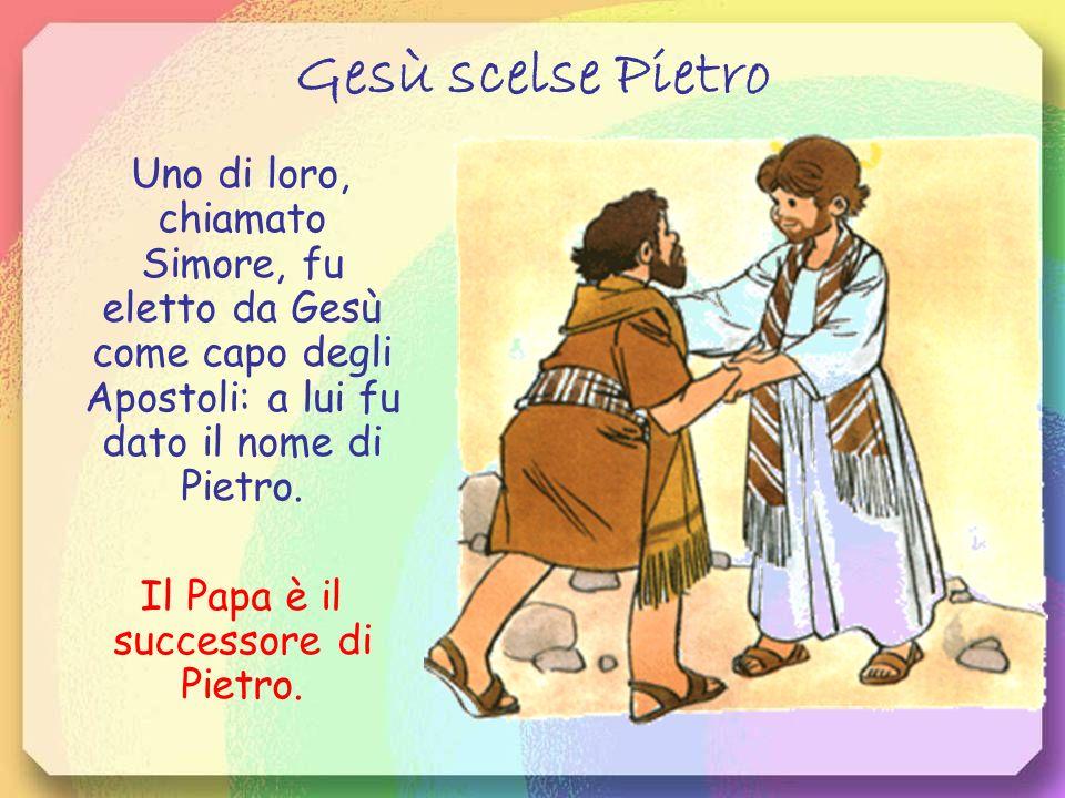 Il Papa è il successore di Pietro.