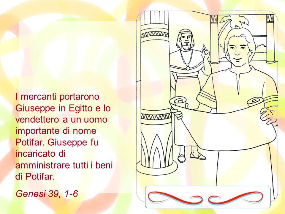 I mercanti portarono Giuseppe in Egitto e lo vendettero a un uomo importante di nome Potifar. Giuseppe fu incaricato di amministrare tutti i beni di Potifar.