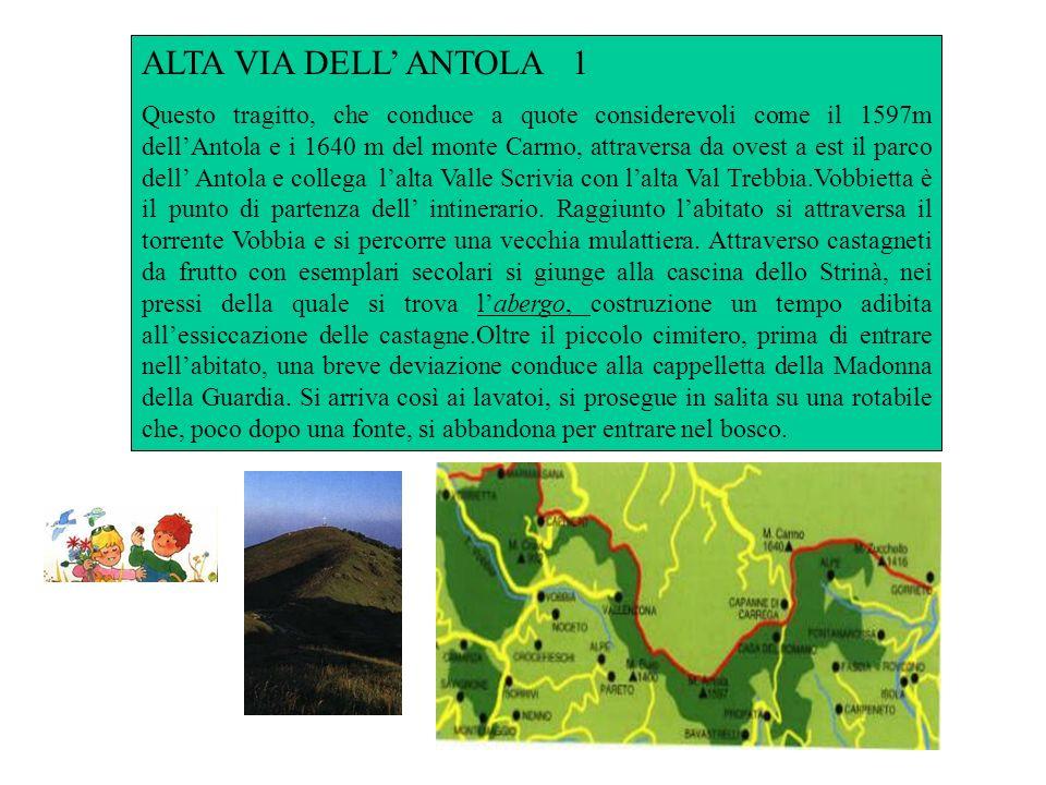 ALTA VIA DELL' ANTOLA 1