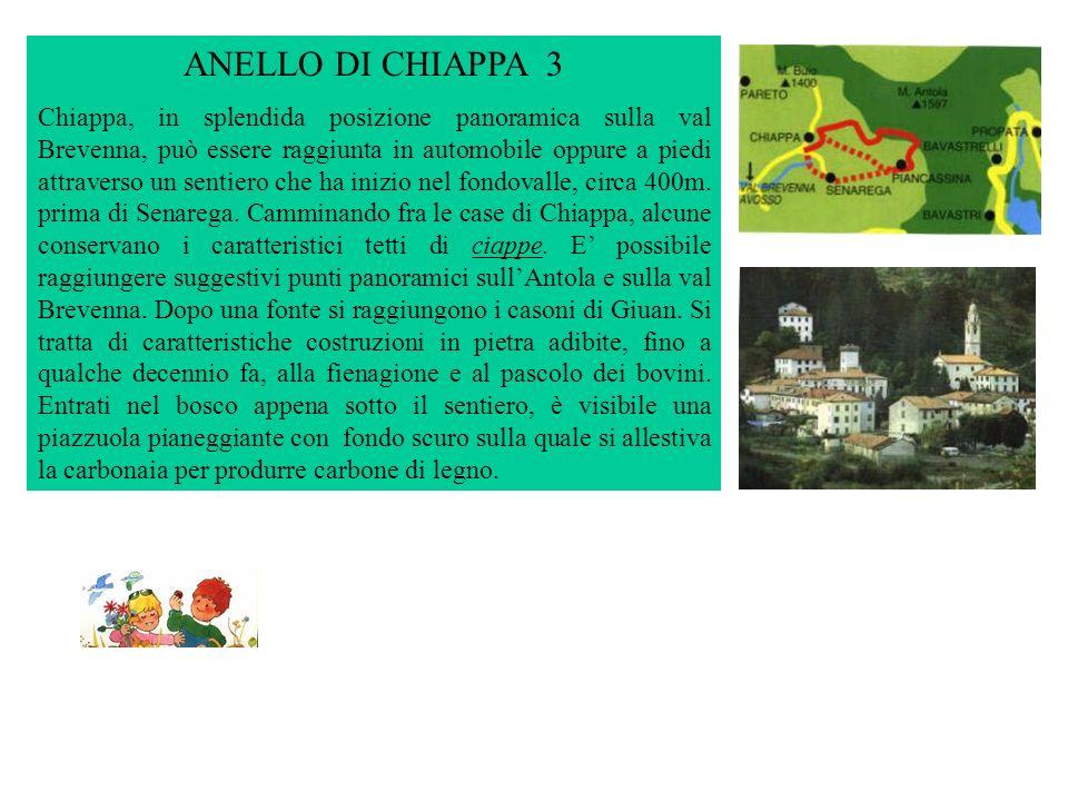 ANELLO DI CHIAPPA 3
