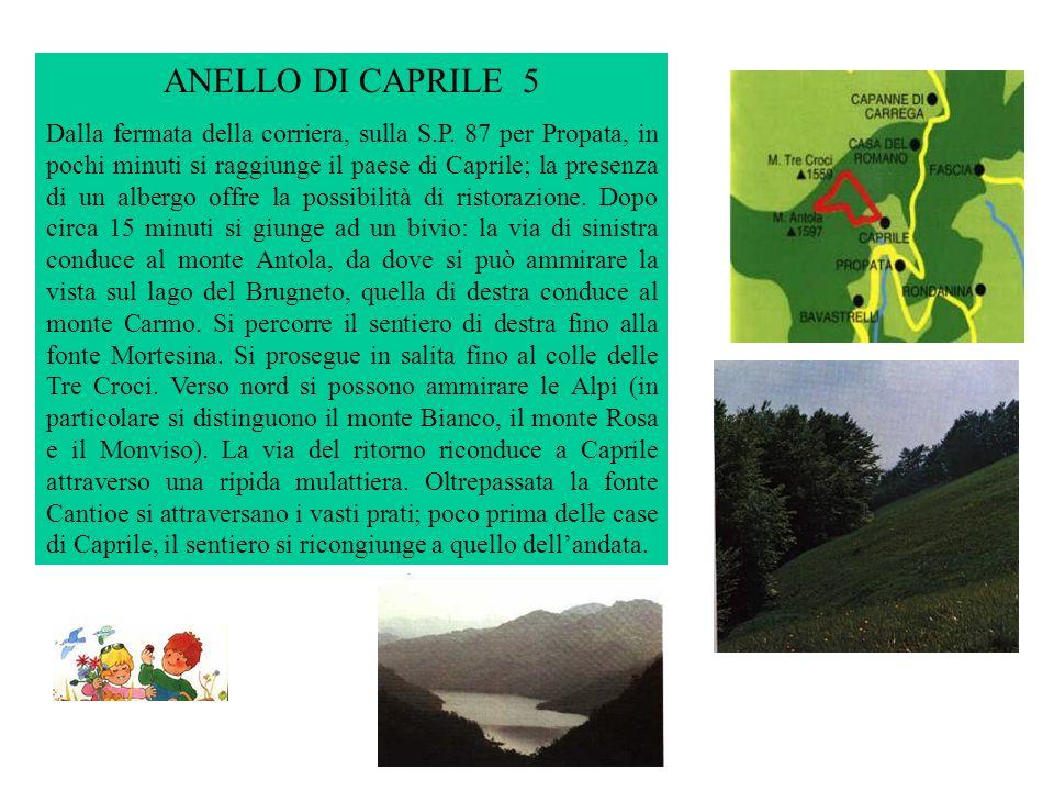 ANELLO DI CAPRILE 5