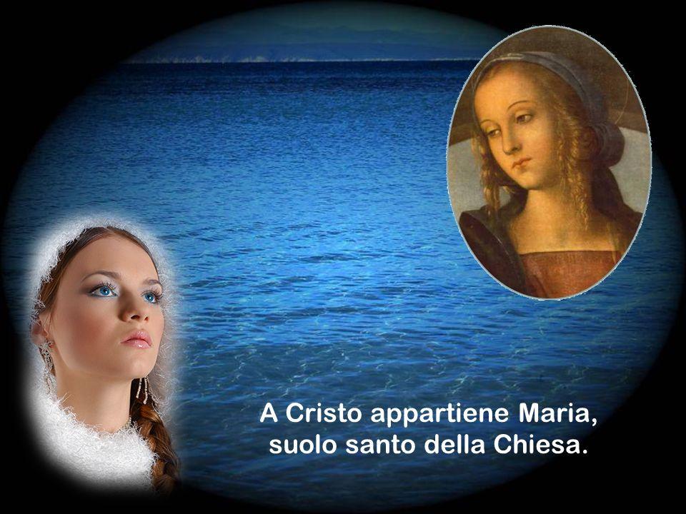 A Cristo appartiene Maria, suolo santo della Chiesa.