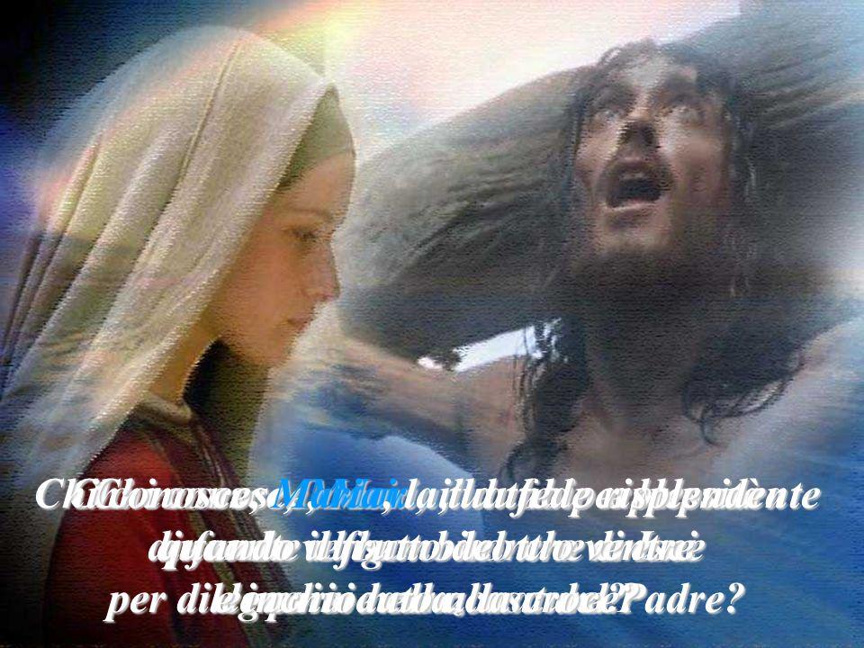 Chi conosce, Maria, la tua fede risplendente