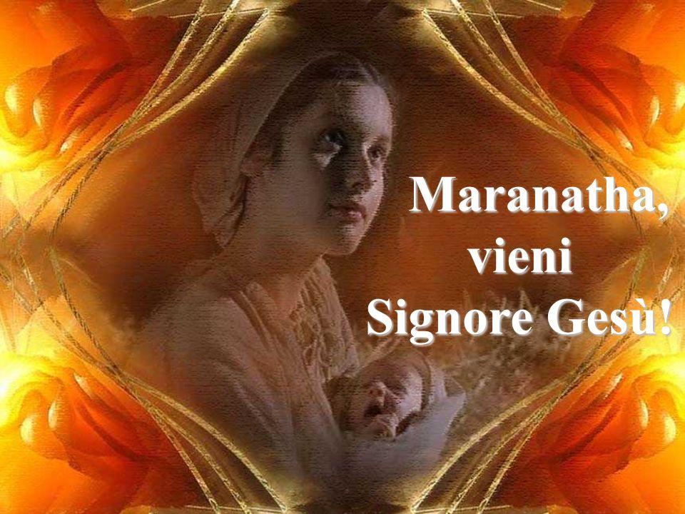 Maria, sei l Amen di Dio. Maranatha, vieni Signore Gesù!