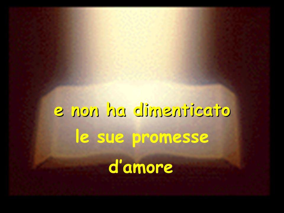 e non ha dimenticato le sue promesse d'amore