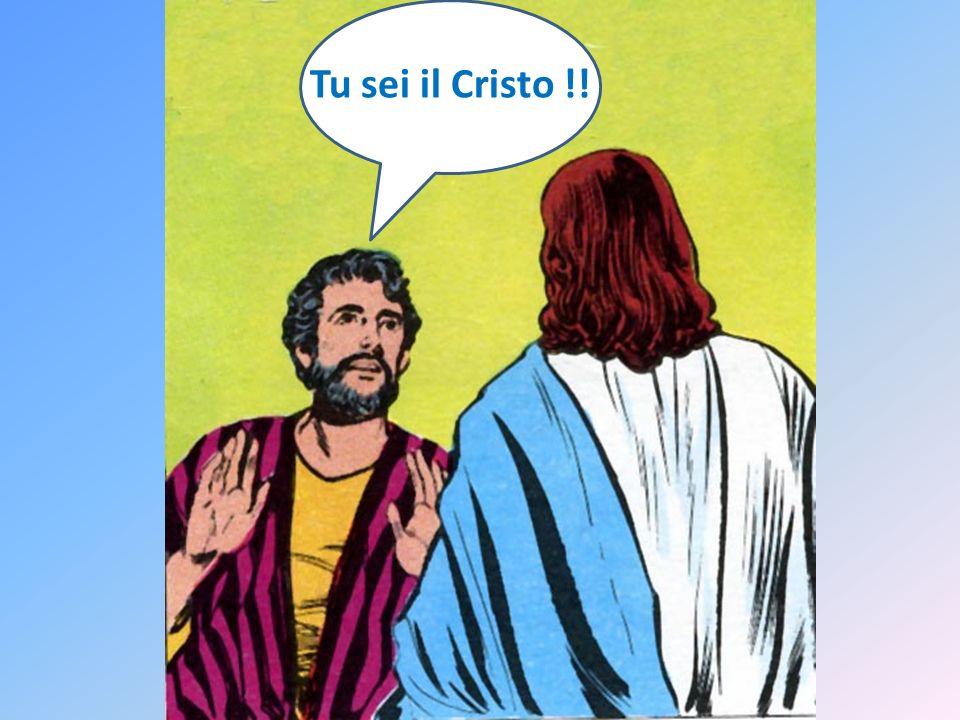 Tu sei Tu sei il Cristo !!