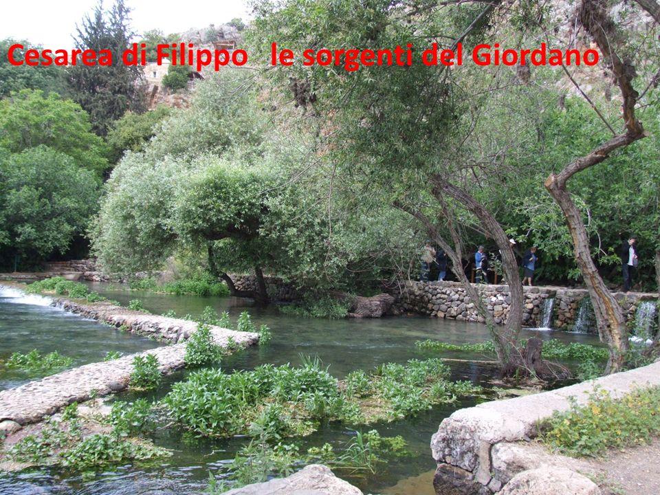Cesarea di Filippo le sorgenti del Giordano