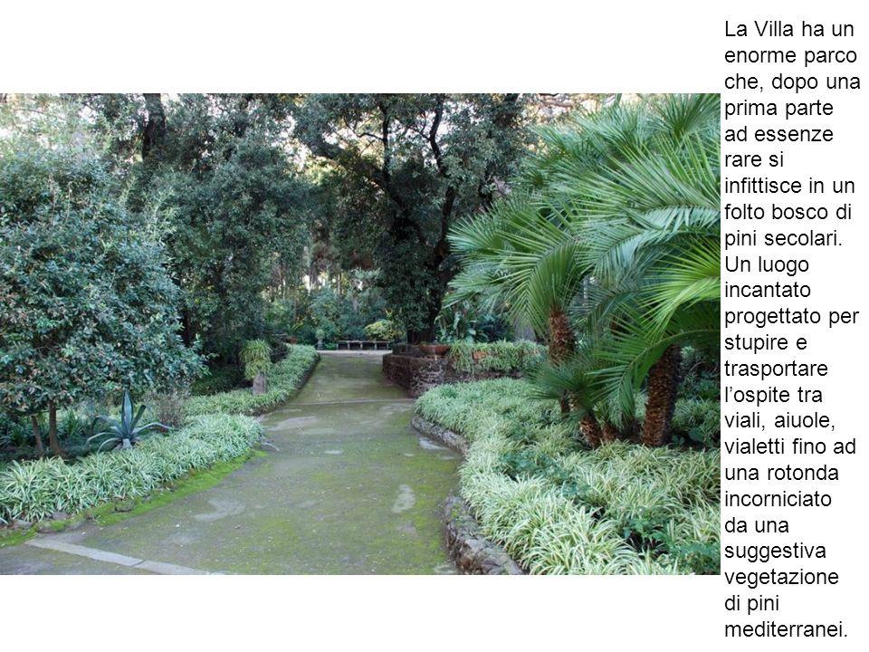 La Villa ha un enorme parco che, dopo una prima parte ad essenze rare si infittisce in un folto bosco di pini secolari.