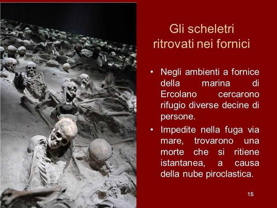 Gli scheletri ritrovati nei fornici